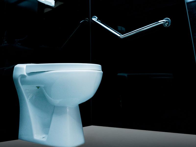 Détail sanitaire prestige PMR axe environnement
